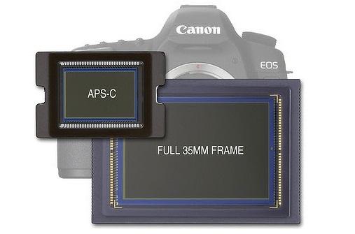 Беззеркальные фотоаппараты или зеркальные, что лучше?
